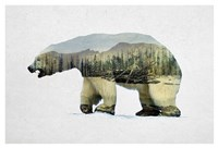 Arctic Polar Bear Fine-Art Print