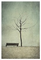 The Cherry Tree - Winter Fine-Art Print