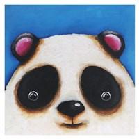 The Panda Bear Fine-Art Print