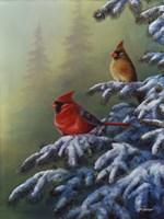 Winter Refuge - Cardinal I Fine-Art Print