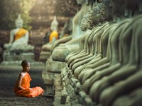 Young Buddhist Monk praying, Thailand Fine-Art Print