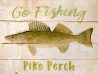 Pike Perch Fine-Art Print