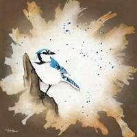 Weathered Friends - Blue Jay Fine-Art Print