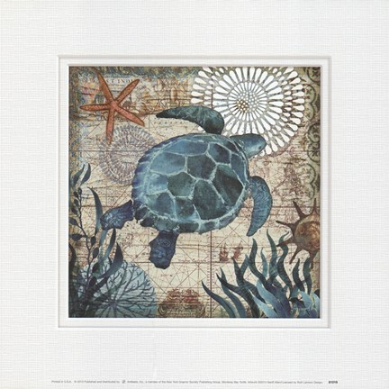 Framed Monterey Bay Turtle Print