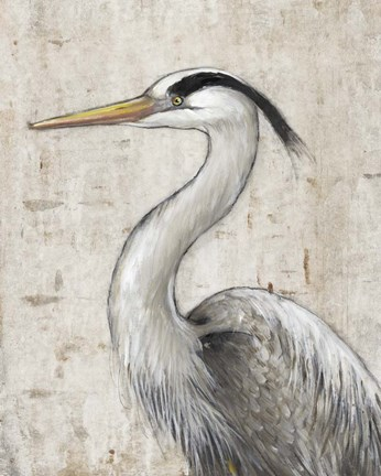 Framed Grey Heron II Print