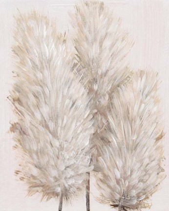 Framed Pampas Grass IV Print