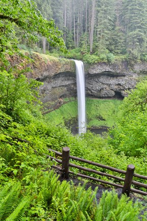 Framed Silver Falls State Park, Oregon South Falls And Trail Leading To It Print
