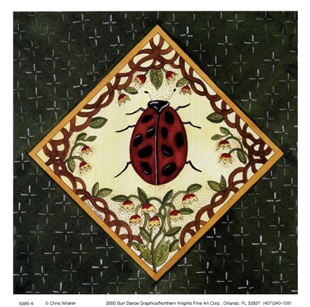 Framed Lady Bug Print