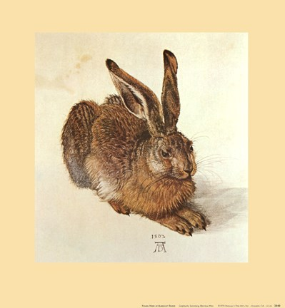 Framed Young Hare Print