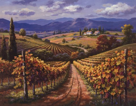 Framed Vineyard Hill II Print
