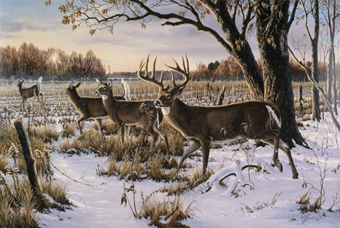 Framed Cautious Crossing - Whitetails Print