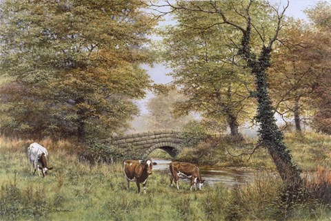 Framed Cows By Bridge Print