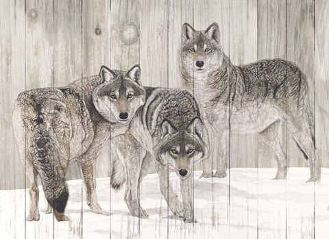 Framed Three Grey Wolves on Wood Print
