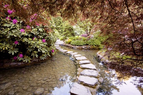 Framed Stepping Stones at Butchart Gardens #2, Victoria, B.C. 09 Print