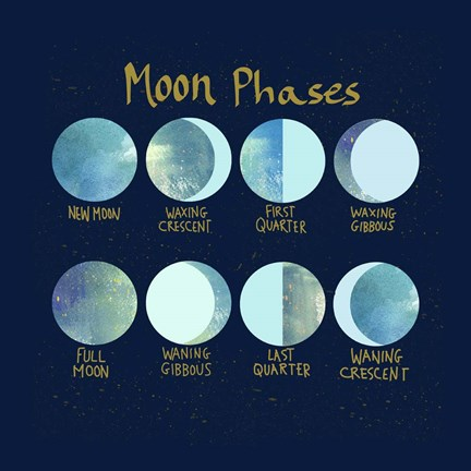 Framed Moon Phases Print