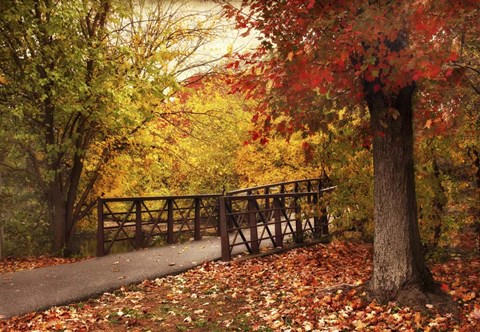 Framed Autumn Footbridge Print