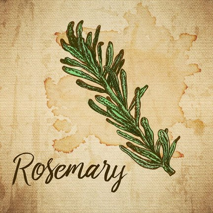 Framed Rosemary on Burlap Print