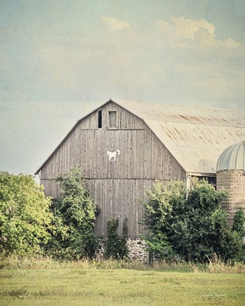 Framed Late Summer Barn II Crop Print