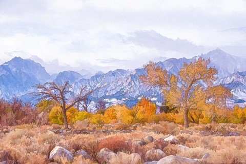 Framed High Desert Vista IV Print