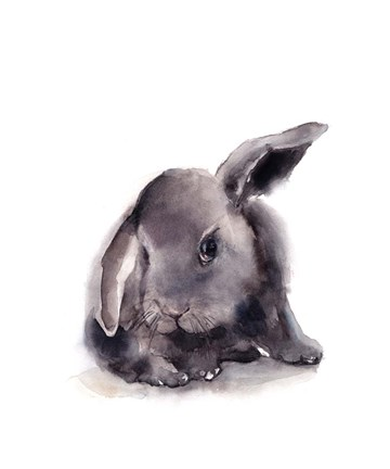 Framed Portrait of a Rabbit Print