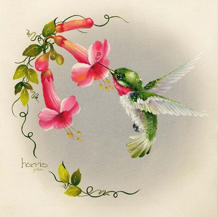 Framed Hummingbirds With Trumpet Flowers 1 Print