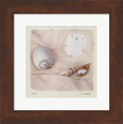 Framed Shells II Print