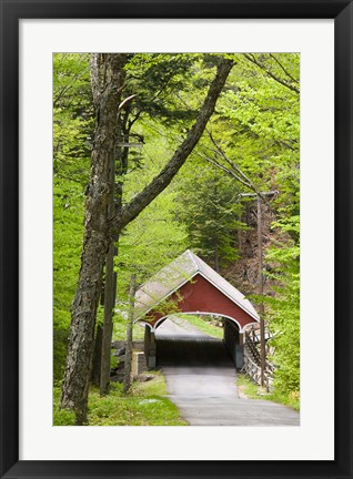 Framed Flume Covered Bridge, Pemigewasset River, Franconia Notch State Park, New Hampshire Print