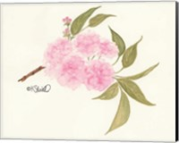 Bashful Blossoms Fine-Art Print