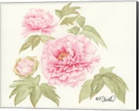 Garden Blush Fine-Art Print