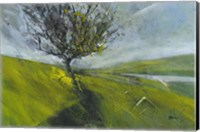 Cambrian Hawthorne Fine-Art Print