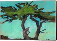 Cypresses Fine-Art Print