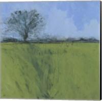 Fenland Morning Fine-Art Print
