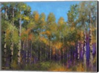 Aspen Autumn Fine-Art Print