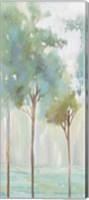 Enlightenment Forest III Fine-Art Print