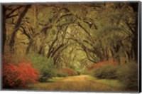 Road Lined With Oaks & Flowers Fine-Art Print