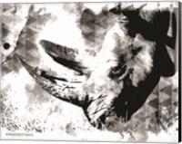 Modern Black & White Rhino Fine-Art Print