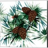 Christmas Hinterland II Pine Cones Fine-Art Print
