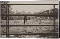 Farmhouse Perspective Fine-Art Print