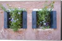 Italian Window Flowers II Fine-Art Print