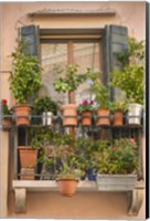 Italian Window Flowers III Fine-Art Print