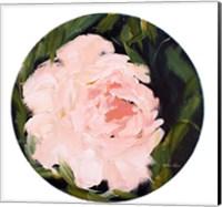 Pink Peony Fine-Art Print