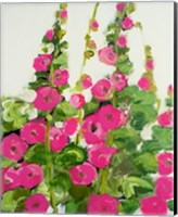 Hollyhocks Fine-Art Print