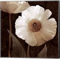 Paisley Poppy II Fine-Art Print