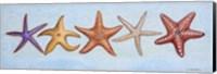 2-UP Sea Dwellers II Fine-Art Print