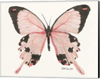 Butterfly 1 Fine-Art Print