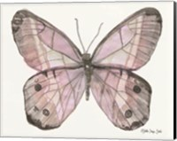Butterfly 5 Fine-Art Print