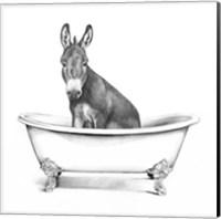 Clawfoot Critter IV Fine-Art Print