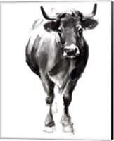 Charcoal Cattle II Fine-Art Print