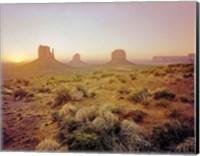 Dawn in the Desert Fine-Art Print
