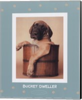 Bucket Dweller Fine-Art Print